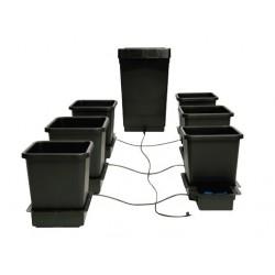 Autopot 6 pots