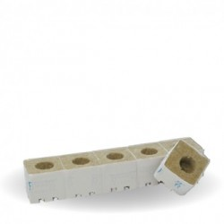 Atami Carton Cubes laine de roche 7.5x7.5x6.5cm