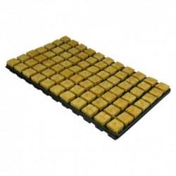 Grodan 77 Cubes laine roche sur plateau 3,5x3,5x4cm