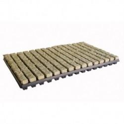 Grodan 150 Cubes laine roche sur plateau 2,5x2,5x4cm