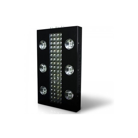 XMAX 6 V4
