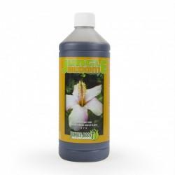 Jungle Grow Booster 1 litre