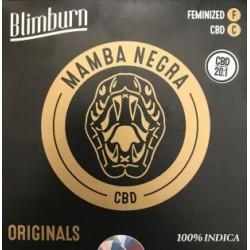 BlimBurn Mamba Negra CBD 20:1 9x graines.