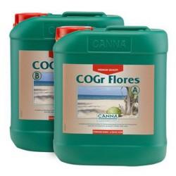 Canna COGr Flores A+B 2x10 litres