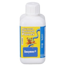 Dutch Formula Enzyme 500 ml