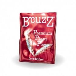 B'cuzz Premium Plant Powder Coco