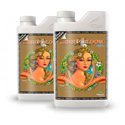 Sensi Bloom Coco A+B 2x1 litres
