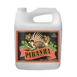 Piranha liquide 5 litres