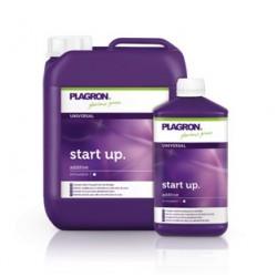 Start Up 1 litre